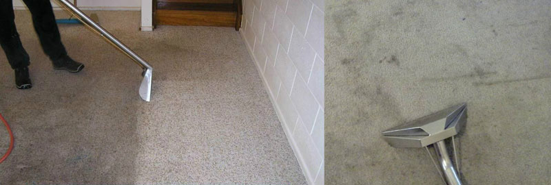 Best Carpet Cleaning Baskerville